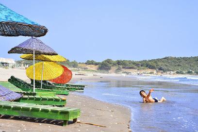 Leech Beach